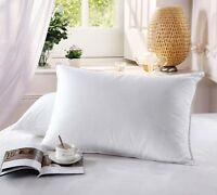 "White 6/"" x 1/'4/"" Newpoint 100-Percent Cotton 6 by 16 Neckroll Pillow Pairs"