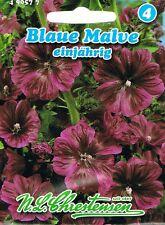 50 Samen Mohrenmalve Mauretanische Malve Malva sylvestris mauritiana