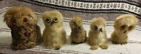 Collection of 5 - INUIT CANADIAN OOKPIK - SNOWY OWL Seal Fur VINTAGE