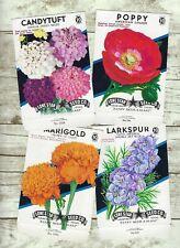 Vintage Seed Packets, Set of 4, Lone Star Seed  Company, Ephemera
