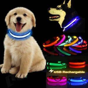 USB Rechargable LED Dog Pet Collar Flashing Luminous Safety Light Up Nylon BE