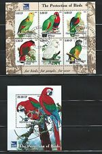 Congo Birds Parrots  Beautiful S/S Mini Sheet MNH