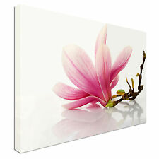 Magnolia Flower Reflected Canvas Wall Art Picture Print