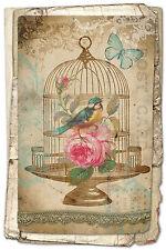 Large Framed Print - Birdcage Art Vintage Style (Victorian Picture Animal Bird)