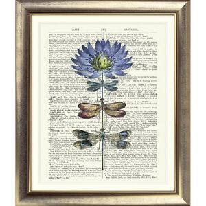 ART PRINT ORIGINAL ANTIQUE BOOK PAGE Vintage Dictionary Dragonfly Flower VINTAGE