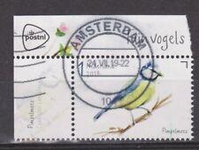 Nederland Netherlands 3743 singing birds pimpelmees blue tit paro mesange 2019