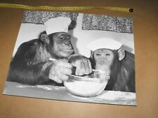 Pg Tips Chimps Brooke Bond Tv Advert retro 70s  mens  tshirt