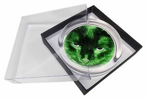 Black Emerald Night Lights Cat Glass Paperweight in Gift Box Christmas, AC-302PW