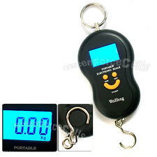 1 x Portable Digital Handing Weight Pocket Scale 40kg 10g Luggage Fishing