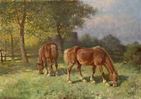 HD Art Print Animals Two Horse Oil painting Giclee Printed on Canvas P763