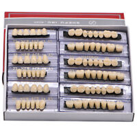 168pcs Denture Acrylic Resin 24 Plate Full Set Teeth Upper Lower Shade A3 Dental