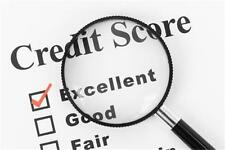 Credit FICO Score Repair Service Business MARKETING PLAN MS Word /Excel NEW!