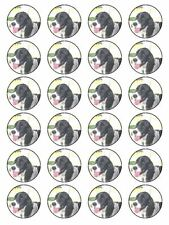 X24 PET ENGLISH SPRINGER SPANIEL DOG BIRTHDAY CUP CAKE TOPPERS EDIBLE RICE PAPER