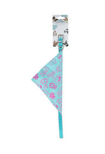 Dog Collar with Cyan Bandana Small