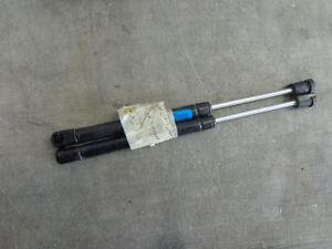 Rear Trunk Shocks 99 00 01 02 03 04 Chrysler 300M