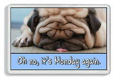 Oh No, It's Monday Again Pug Dog Fridge Magnet *Cute Novelty Gift*