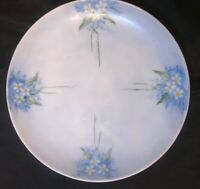 Vintage Hand Painted Blue Plate White Daisies Art Nuevo Porcelain -Artist N.M.B.