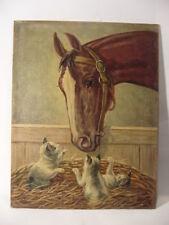 Pferd und Kätzchen beim spielen Aachen 1933 Katze Katzenbaby  Kitten Cat Horse