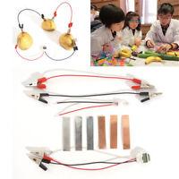 Bio Energy Science Kit Children Educational Fun Potato Electricity Experiments