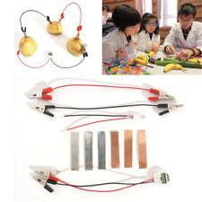 Bio Science Kit Children Educational Fun Potato Electricity Experiments