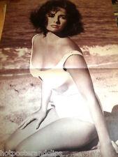 Schönes Poster Elizabeth Taylor ( damals schönste Frau der Welt ) sehr sexy