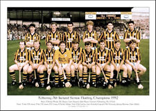 Kilkenny All-Ireland Senior Hurling Champions 1992: GAA Print