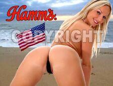 Fridge Magnet Sexy Hamm's Bikini beach babe sexy blonde American flag bar art