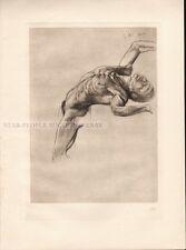 MAX KLINGER - BRAHMS FANTASY TITANs * nude limited copperplate photogravure 1915