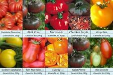Tomatensamen,10 alte mittlere Sorten, Gewicht bis 400g, Samen Set Paket