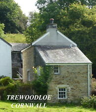 LOVELY HOLIDAY COTTAGE - CORNWALL-DOG:-) SLEEPS 3-4 ACRES-SPRING WALKING..WOW!!