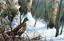 Winter Morning Ruffed Grouse  ByTIm Schultz  Signed and Numbered  Print