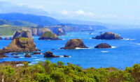 Sonoma Coast  Ocean Front Property Sonoma COUNTY