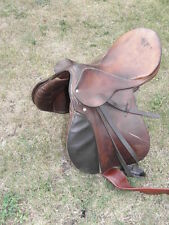 STUBBEN johs Siegfried saddle 17 selle SHOW/WORKING HUNTER/DRESSAGE