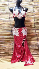 Egyptian Belly Dance Costume bra & Skirt Set Professional Dancing Red Silver