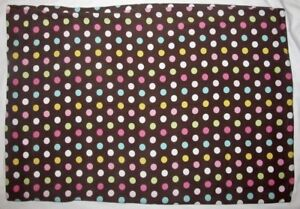 Pottery Barn Teen Brown Flannel Pillow Case with Polka Dots Standard