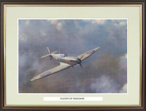 """Spitfire picture """"Flight of Freedom"""" by Roy Cross - NGNSF2"""