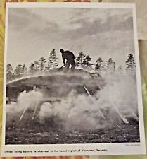 1962 Timber Being to Charcoal in the Forest Region of Värmland,Suède art print