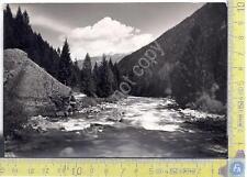 Val Genova - Rifugio Cascata Nardis - Anni '60 - Sixties - Cartolina - Postcard