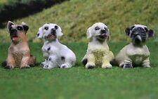 Hunde Miniatur Puppenstube Puppenhaus 1:12 Diorama 1:18