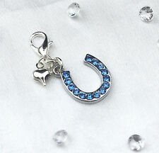 Something Blue Crystal Lucky Horse Shoe & Heart Bride Garter Bracelet Charm Gift