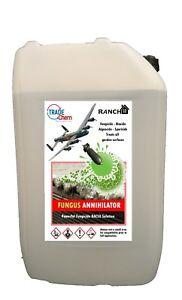 Pilz Annihilator BAC50 Benzalkonium Chlorid Lösung Algues Fungizid 20L