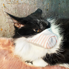 Cat Safety Face Mask (2-Pack) Two-Layer Protection For Your Cat + FAST Shipping