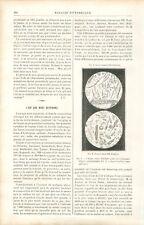 L'Air que nous respirons Gaz Azote Oxygène Algues Vertes Spores GRAVURE 1888