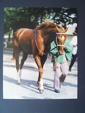 Secretariat going to the paddock in the Belmont.