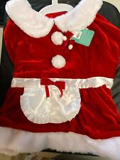 Holiday Mrs. Claus  dog Dress