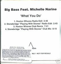 Big Bass vs Michelle Narine - what you do promo cd
