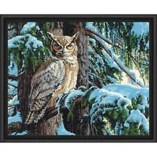Paintworks® Great Horned Owl Paint-by-Number Kit