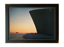 Dolphin framed wall art -50x70cm, Aquadyne by Bob Talbot