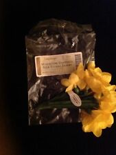 Longaberger Collector's Club Miniature Daffodil Flowers Floral Insert