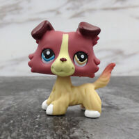 LPS Hasbro Littlest Pet Shop 1262 Toy Cream Collie Dog Plum Puppy Different Eyes